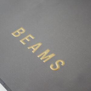 BEAMS6