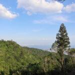 六甲山が思い浮かぶ紙袋8